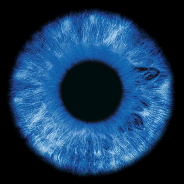 Contact Lenses eye